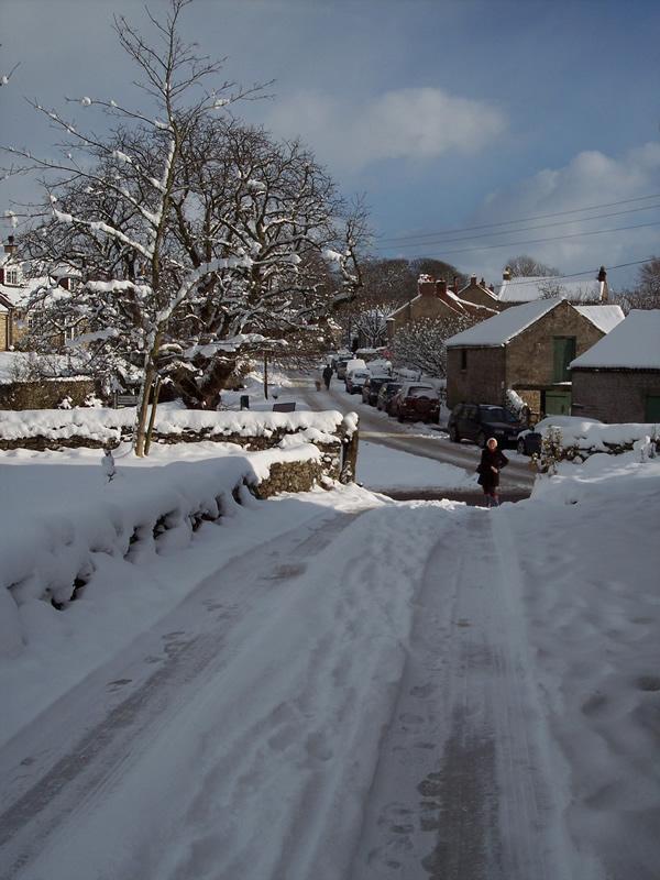 Cottage Driveway 2010